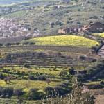 Sicilia Riserva Biosfera Unesco