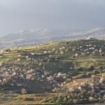Sicilia Riserva della Biosfera Unesco