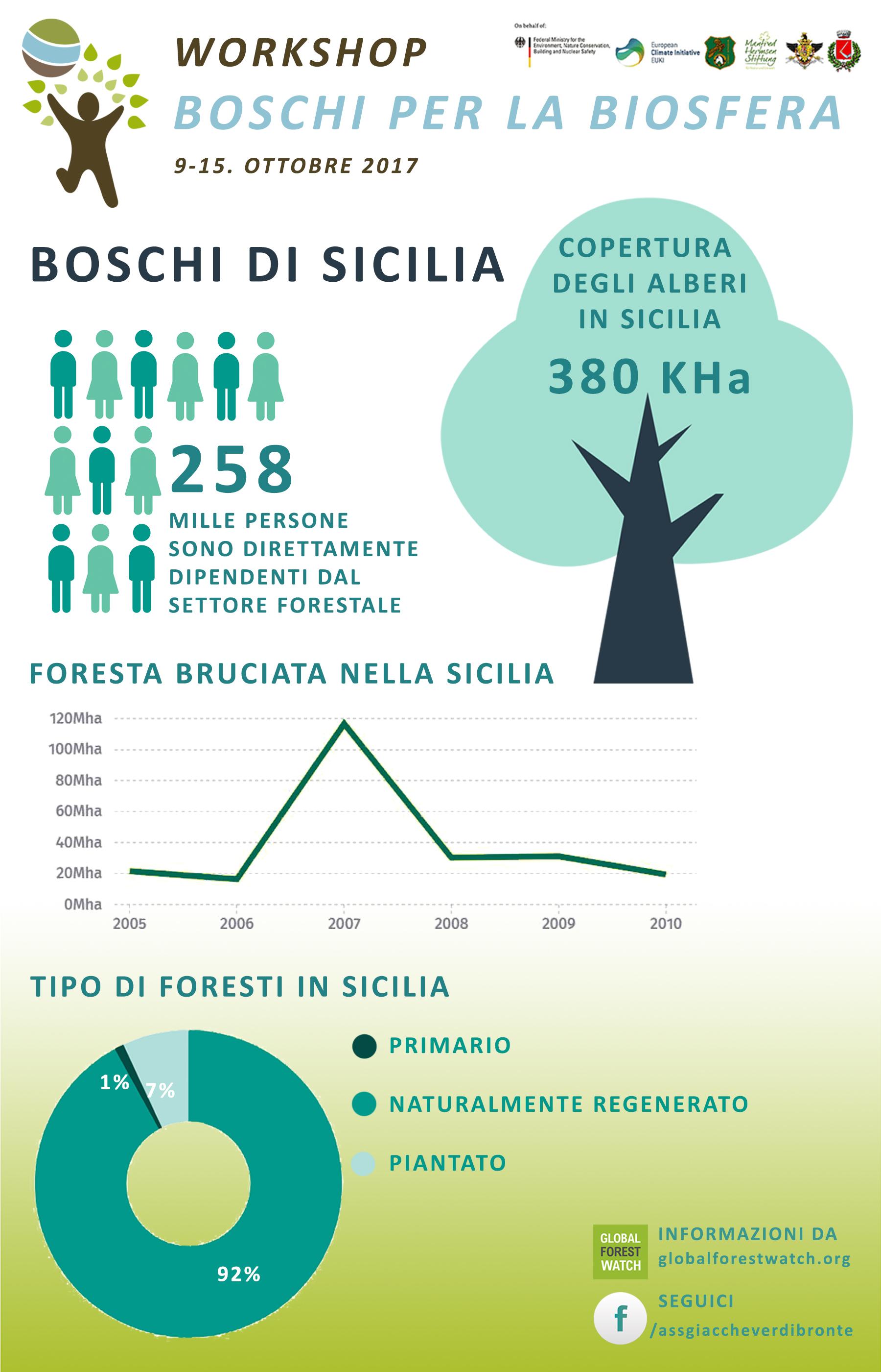 Infografica: settimana del Workshop sulla protezione forestale